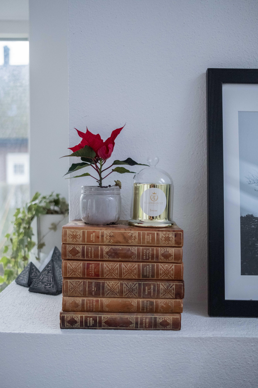 Julklappstips: Dofter till hemmet i snygg design!