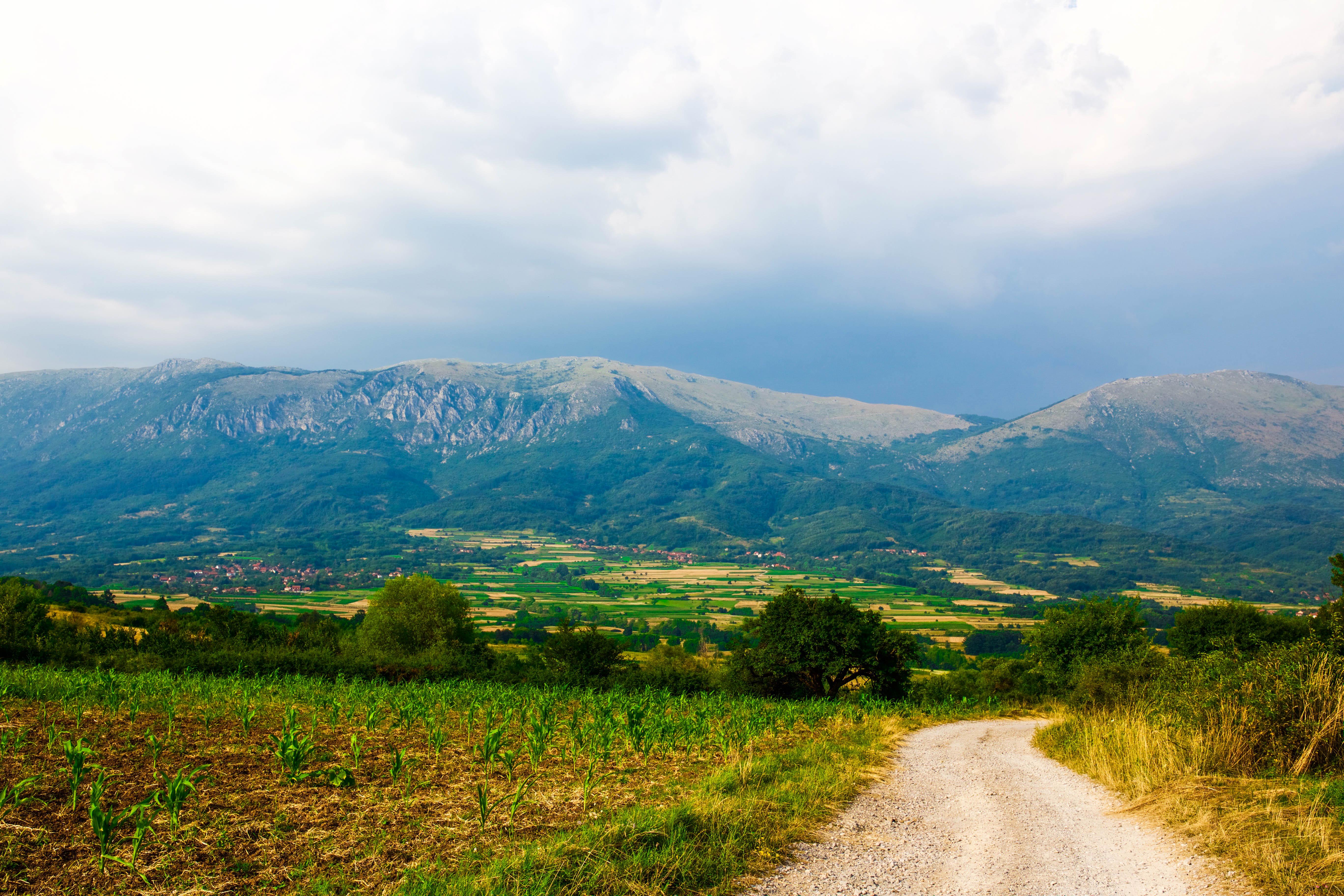 Resetips: Semestra i Serbien